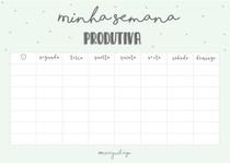 Cronograma semanal + Caderno de Erros
