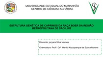 taxa de endogamia caprinos no maranhão