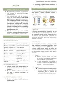 Proteínas - Bioquímica humana