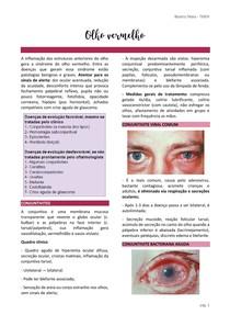 Resumo Olho vermelho