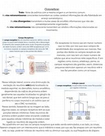 Sistema Somatossensorial 3/3