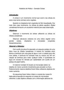Exemplo_de_Relatorio_de_pratica