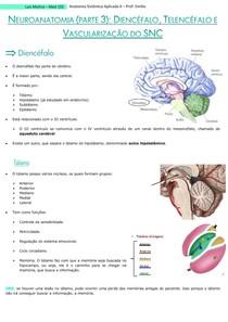 Neuroanato (parte 3) - diencéfalo, telencéfalo e vascularização