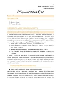 Caderno Responsabilidade Civil @catharinaorganiza
