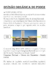 DIVISÃO ORGÂNICA DO PODER (CONSTITUIÇÃO)
