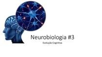 Neurobiologia #3 - Evolução do Processo Cognitivo