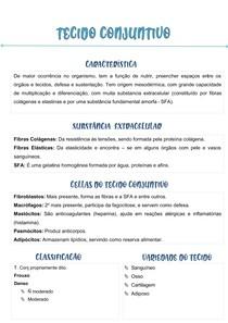 MAPA MENTAL - Tecido Conjuntivo