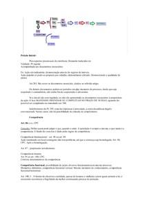 Revisão Processo - AULA SCHMIDT