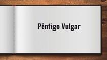 PÊNFIGO VULGAR