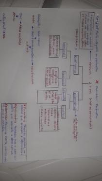 Introdução Bioestatistica Part.2