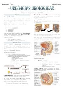 Emergências Urológicas - Resumo