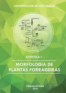 Morfologia das plantas forrageiras