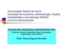 Slides 1 - Efic. e sistema (Prof Márcia)