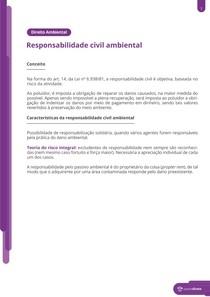 A responsabilidade civil ambiental - Resumo