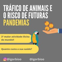Tráfico de animais e o risco de futuras pandemias