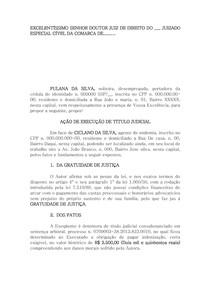 MODELO DE EXECUÇAO DE CARTA DE CREDITO