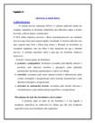 Sistema Endócrino. REVISÃO