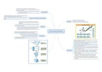 Mapa Mental Estrutura das Proteínas