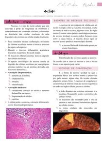 Necrose (classificação e morfologia) - Patologia