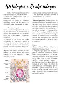Tecido Epitelial e Tecido conjuntivo (tec adiposo, especiais, osseo, cartilaginoso, sanguineo)