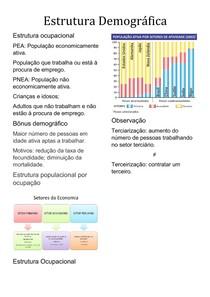 Estrutura Demográfica