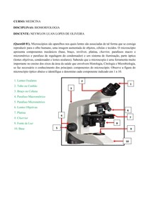 Estudo Dirigido - Biomorfologia