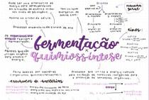 FERMENTAÇÃO X QUIMIOSSINTESE