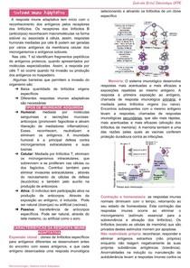Sistema Imune Adaptativo
