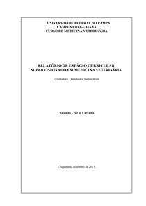 RELATÓRIO DE ESTÁGIO CURRICULAR - REPRODUÇÃO EQUINA