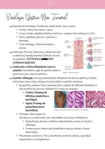 Patologia Gástrica Não Tumoral