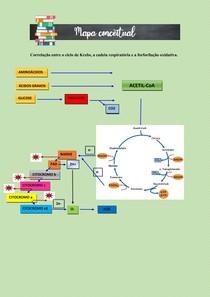 FOSFORILAÇÃO OXIDATIVA, CICLO DE KREBS E CADEIRA RESPIRATÓRIA - MAPA CONCEITUAL