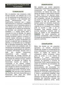 MORFOLOGIA E FUNÇÃO DOS PLASTÍDIOS