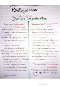 Doenças (protozoários)