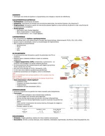 Resumo Dislipidemia