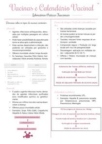 Vacinas e Calendário Vacinal