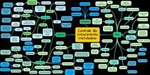 MAPA MENTAL - Controle do crescimento bacteriano