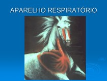 AULA DE  RESPIRATORIO II 2012.2