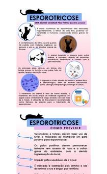 Esporotricose resumo