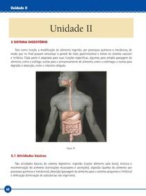 unid_2