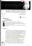 10   Gestão de Competências   Articulando Indivíduos, Organizações e Sociedade