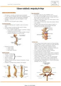 Coluna vertebral e dorso
