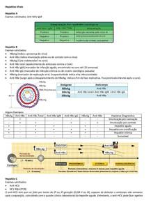 Hepatites Virais/ Icterícia (análise prática)