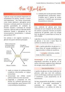 Via Glicolítica (Glicólise, Piruvato, Fosforilação da glicose) - Bioquímica Metabólica/Ensino Superior