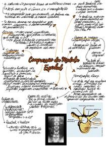 Compressão da Medula Espinhal