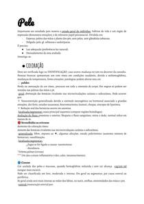 Exame físico pele (porto)