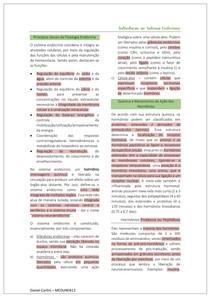 Introdução ao Sistema Endócrino