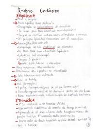 Embriologia Endocrinológica