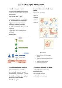 Vias de sinalização intracelular