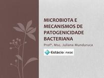 Microbiota e mecanismos de patogenicidade bacteriana