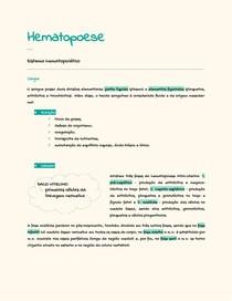 Resumão simplificado do Sistema Hematopoiético e produção de células sanguíneas